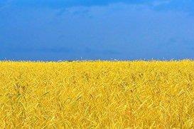 Символика желто-голубого цвета и европейского флагов.